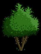 Avocado Tree1-icon