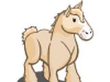 Cream Draft Horse