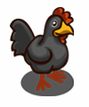 Schwarzes Huhn-icon.png