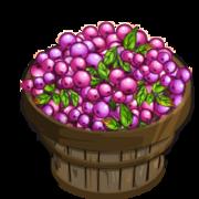Lillipilli Bushel-icon.png