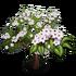 Giant Evergreen Pear Tree-icon