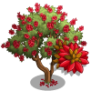 Coast Coral Tree-icon.png
