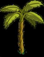 Banana Tree1
