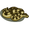 Anaconda-icon.png