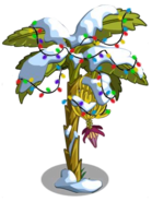 Banana Tree4
