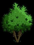 Avocado Treei2-icon