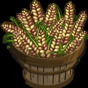 Australian Barley Bushel-icon.png