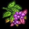 Purple Lillipili-icon