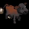 Australian Freisian Sahiwal Cow-icon