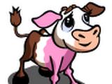 Neapolitan Calf