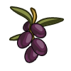 Olives-icon.png