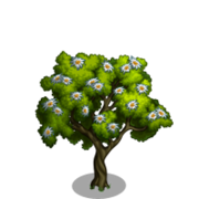 Edelweiss Tree-icon.png