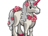 Cherry Unicorn