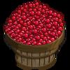 Cranberry Bushel-icon.png