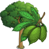 Ceiba Tree-icon.png