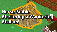 Unfinished horse stable stallion