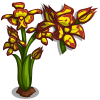 Leopard Orchid Single Bloom-icon.png