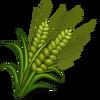 Green Australian Barley-icon
