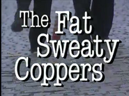 Thefatsweatycoppers