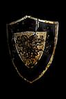 Crusader Shield.png