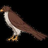 Sitonai Skill2 Hawk Sprite
