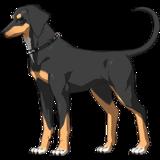 Carmilla Rider Dog Sprite2
