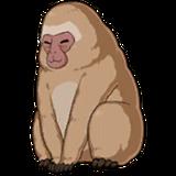 Arjuna Monkey Sprite