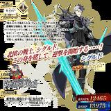 Servant details 213
