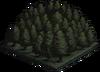 QuietForest.png