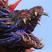 Black Soulstone's avatar