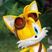 TailsGirl6000's avatar