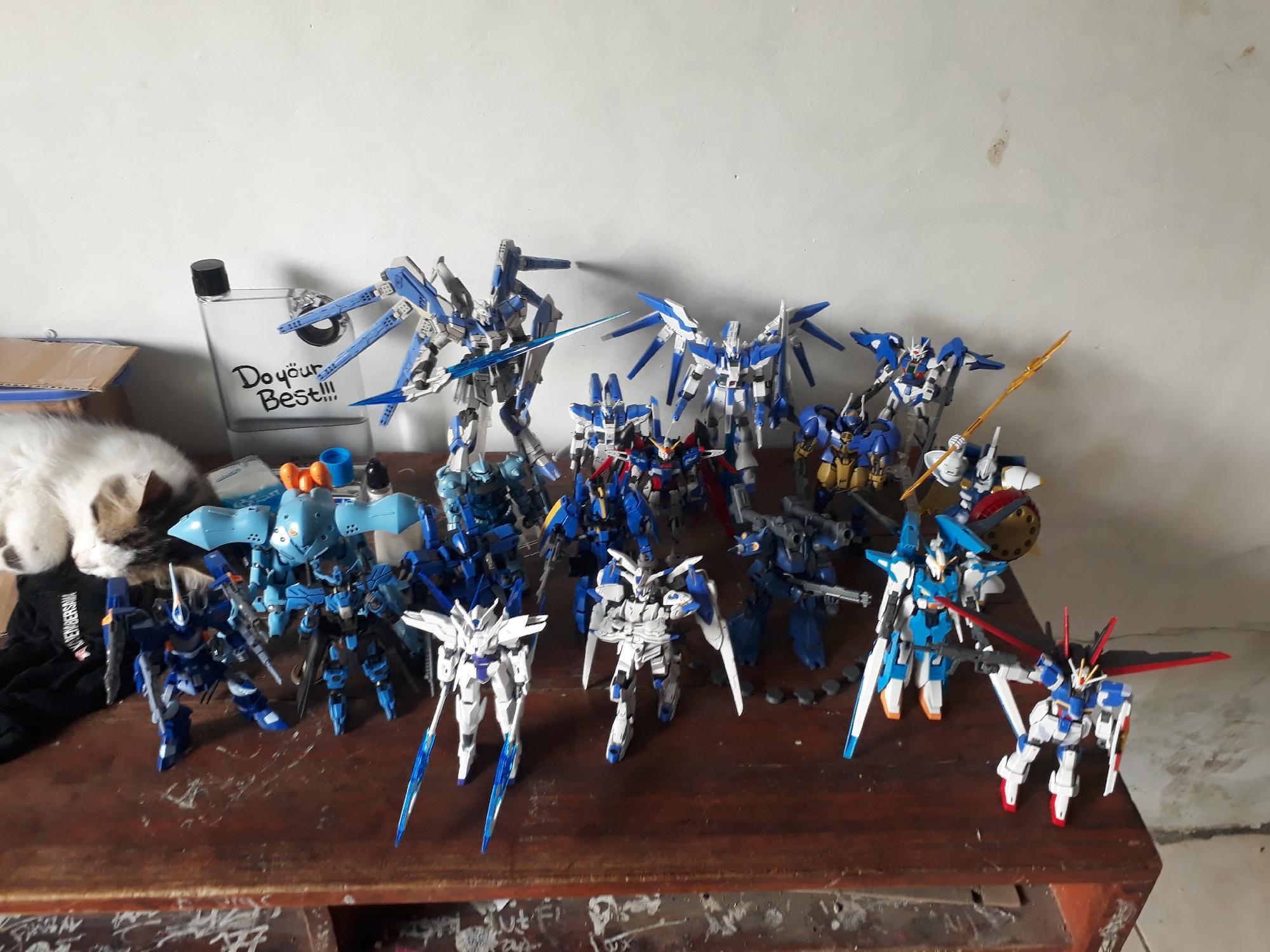 Blue squad