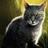 Savuvarjo's avatar