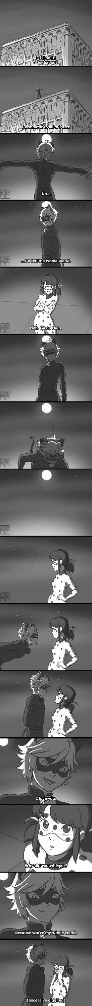 Ladynoir comic