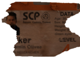 The Player (SCP Containment Breach)