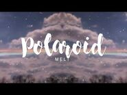 Meltberry - Polaroid 🌈 (Original)