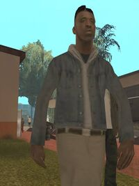 Alle's default appearance (Credit goes to Grand Theft Auto: San Andreas)