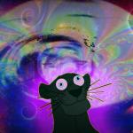 KXYX's avatar