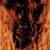 Redwolf22