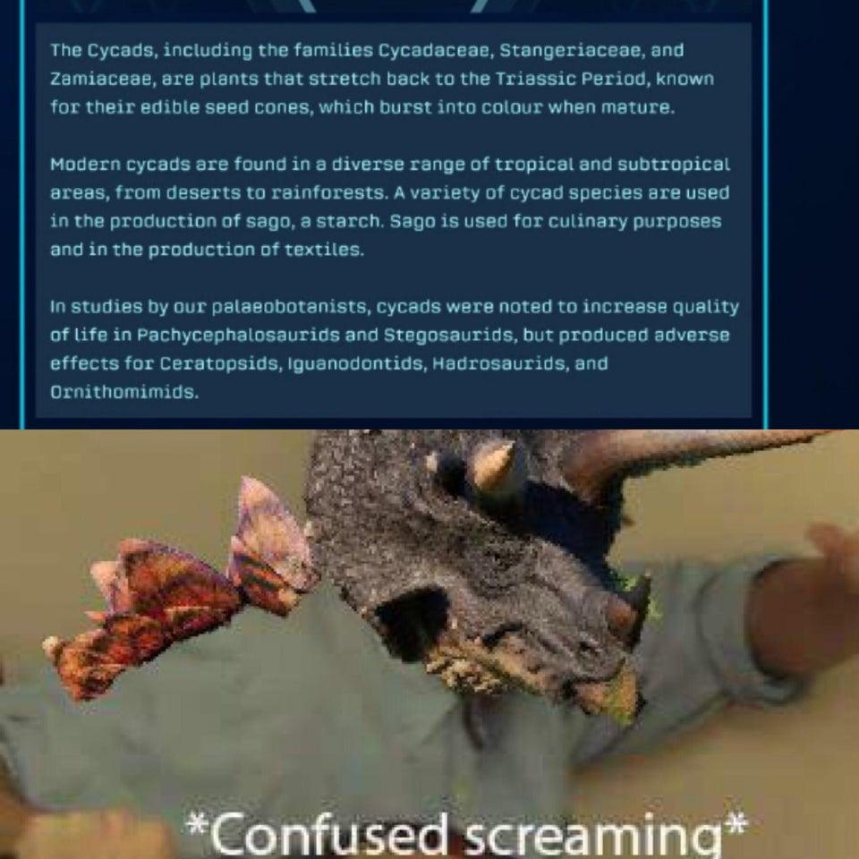 Jurassic world Evolution Stegoceratops meme.