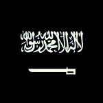 Bashihbk01's avatar