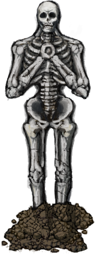 Skeleton