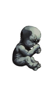 Baby Stage