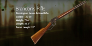 Brandon's Rifle