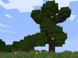 Greatwood Tree