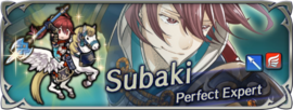 Hero banner Subaki Perfect Expert.png