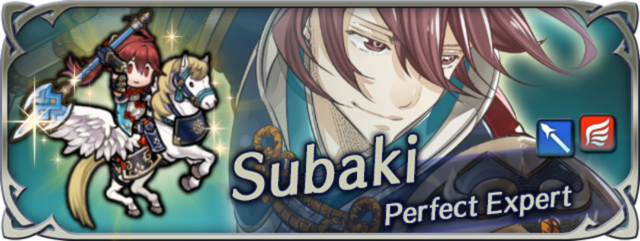 Hero banner Subaki Perfect Expert.png