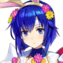 Catria Spring Whitewing Face FC.webp