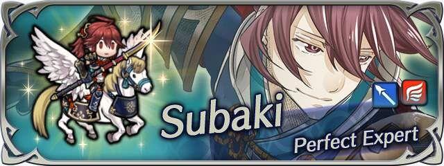 Hero banner Subaki Perfect Expert 2.jpg