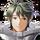 Stahl: Viridian Knight